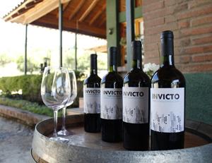 fia_vino_sin_alcohol