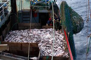 pesca_extractiva