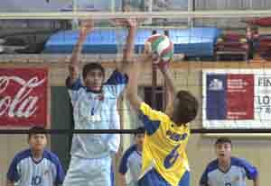 deportes_voleibol