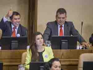 Diputado Luis Rocafull en la Cámara de Diputados