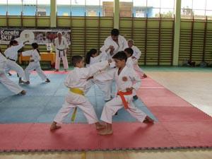 karate_skif